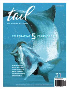 tail fly fishing magazine issue 31