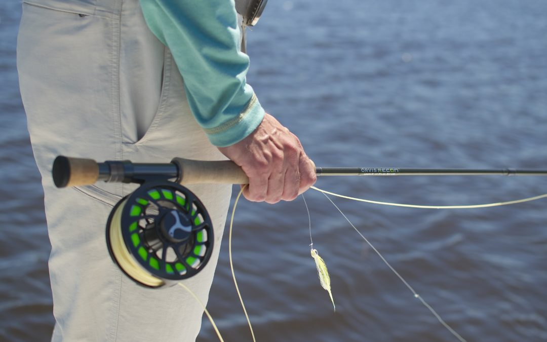 Saltwater fly reel review tail fly fishing magazine for Fly fishing reel reviews