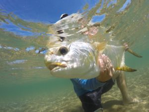 tail fly fishing magazine photo contest - fly fishing magazine