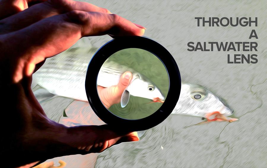 Stories Through a Saltwater Lens