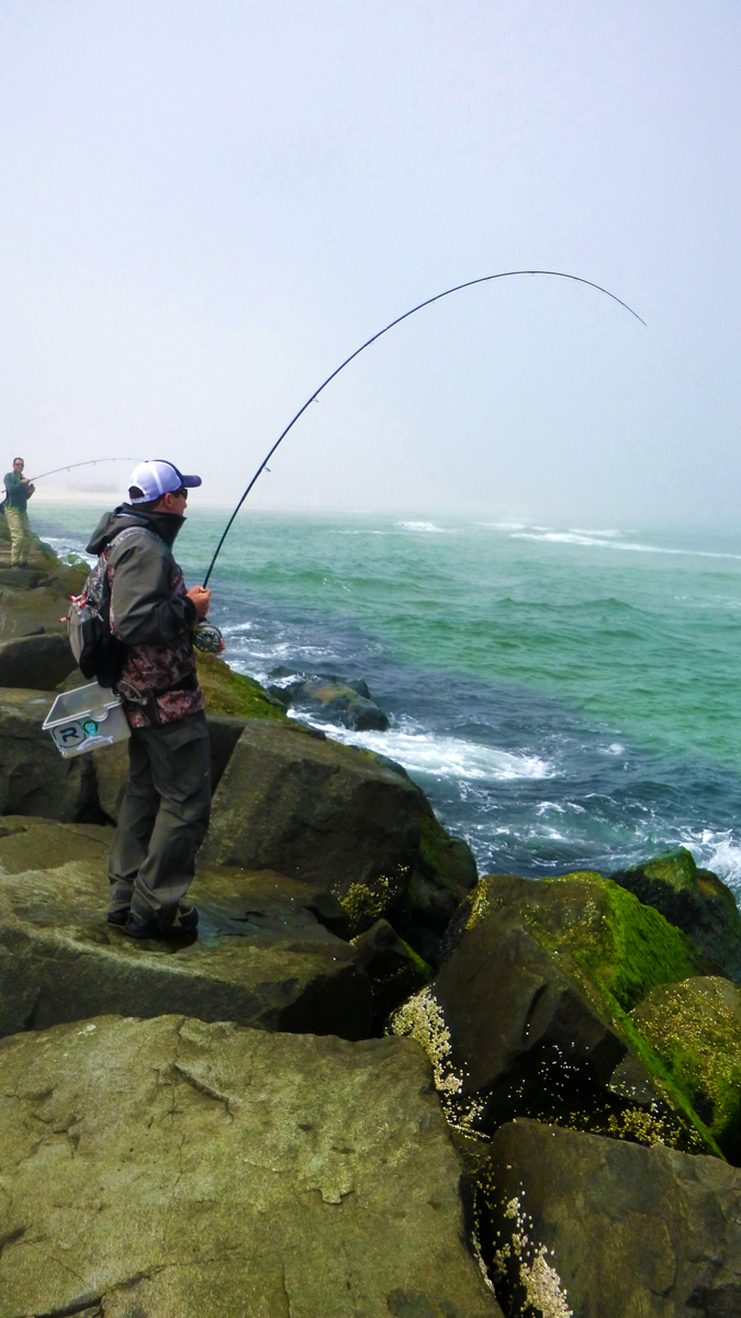 Beached fly fishing without a boat tail fly fishing for Saltwater fly fishing magazine