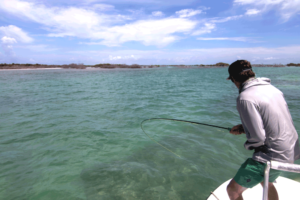 tarpon on the fly - fly fishing for tarpon