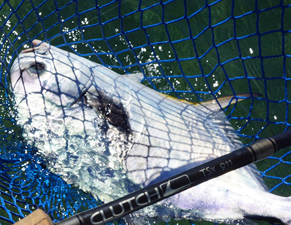 Using nets for saltwater species tail fly fishing magazine for Saltwater fly fishing magazine